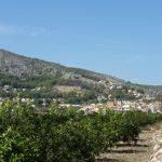 Alcalali_paisaje_sept