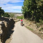 Cycling_Alcalali
